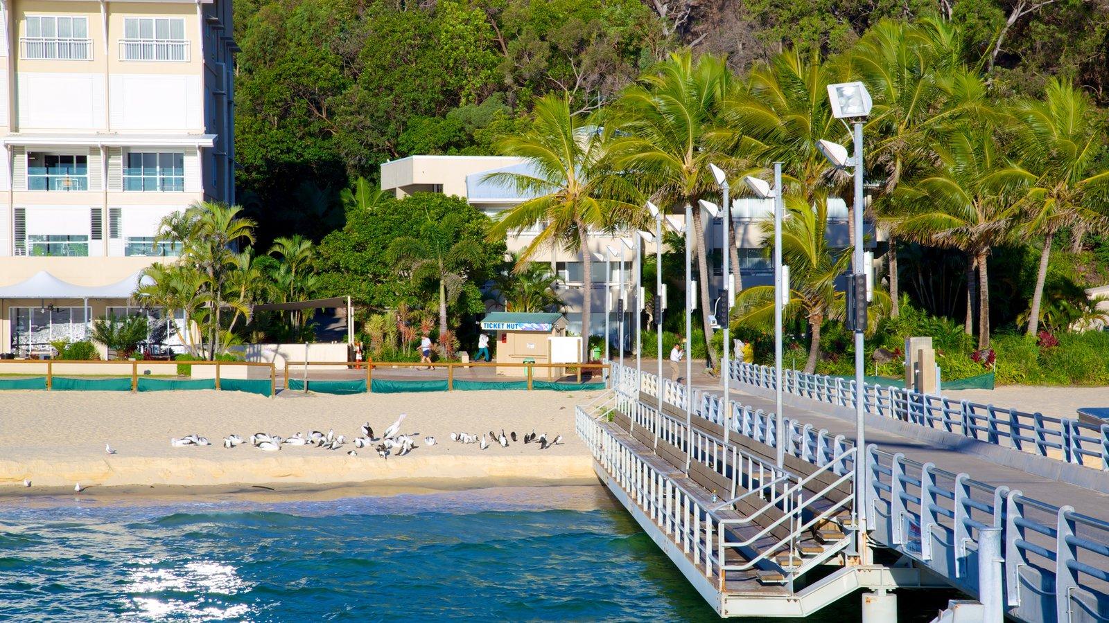 Parque nacional de Isla Moreton ofreciendo escenas tropicales