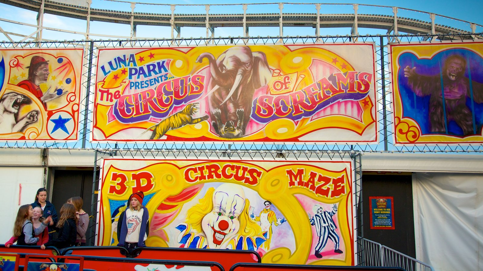 Luna Park showing rides and signage
