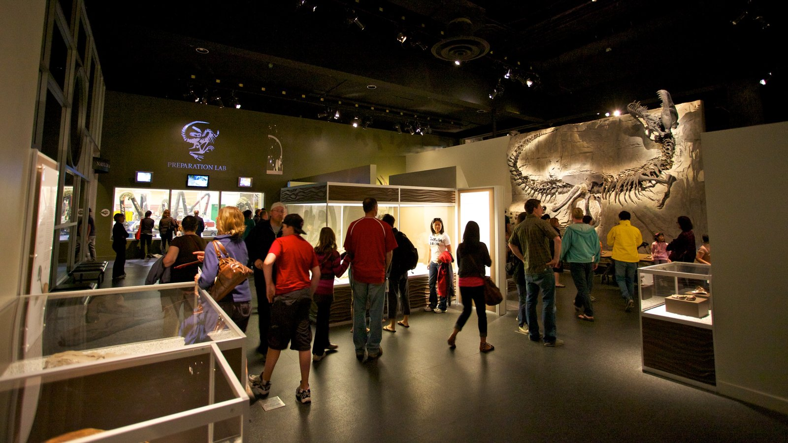 Royal Tyrrell Museum featuring interior views as well as a large group of people