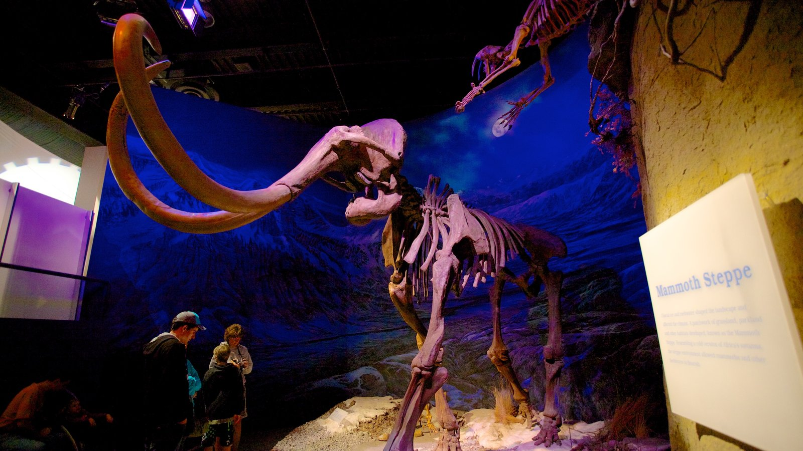 Royal Tyrrell Museum featuring interior views as well as a family