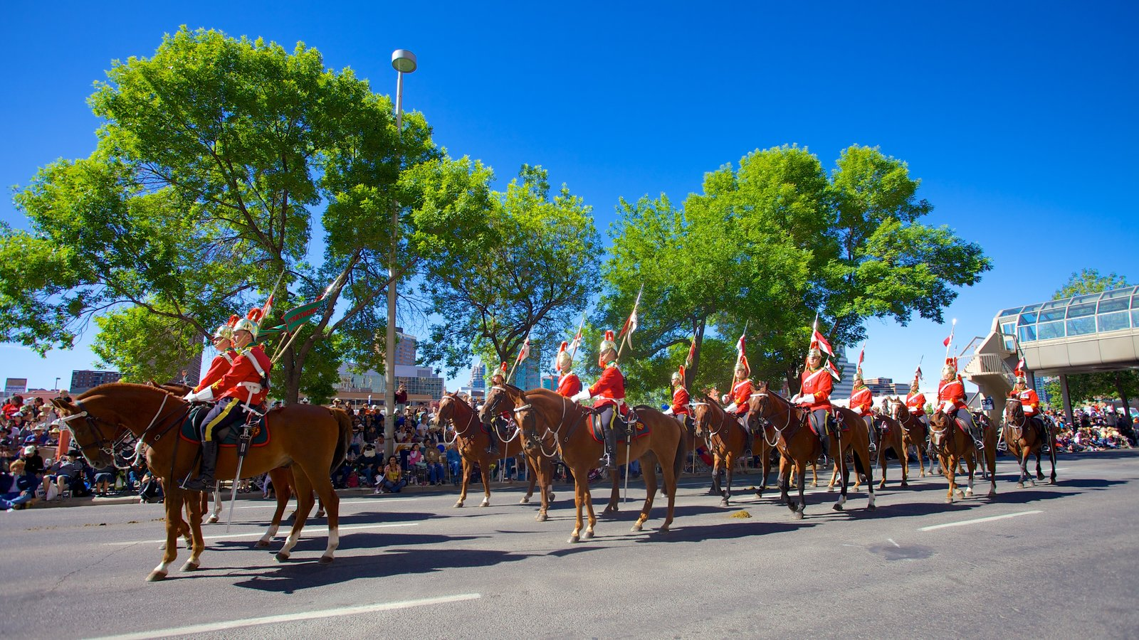 Calgary featuring a festival, street scenes and horse riding