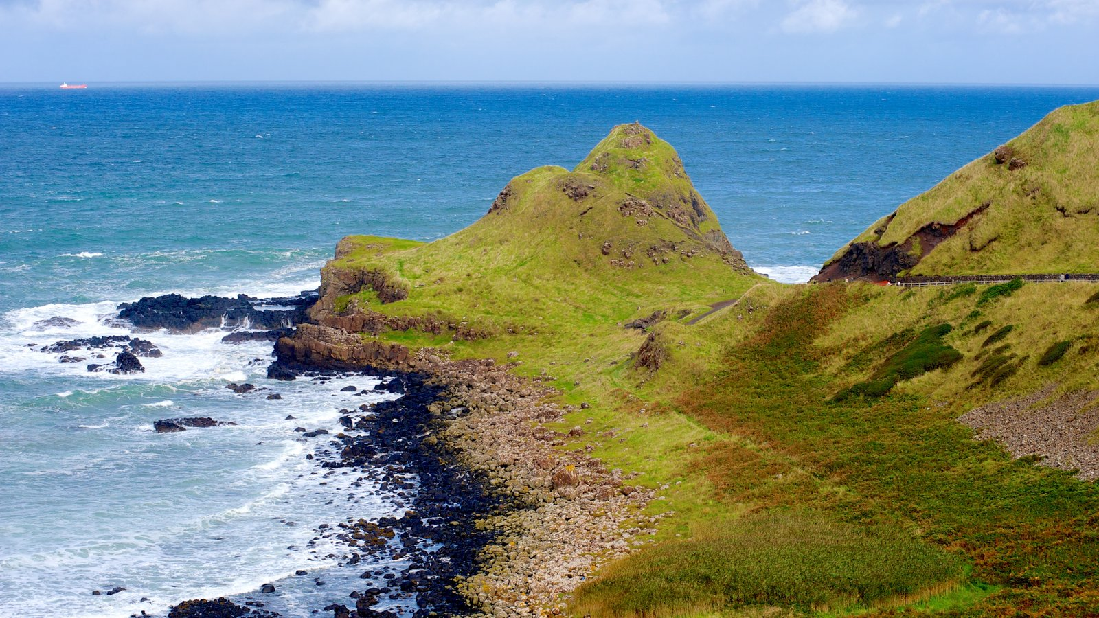 Giant\'s Causeway featuring tranquil scenes and rocky coastline