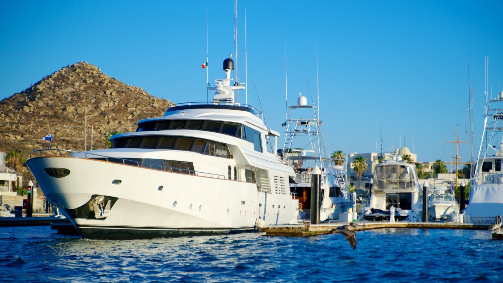Marina Cabo San Lucas which includes a marina