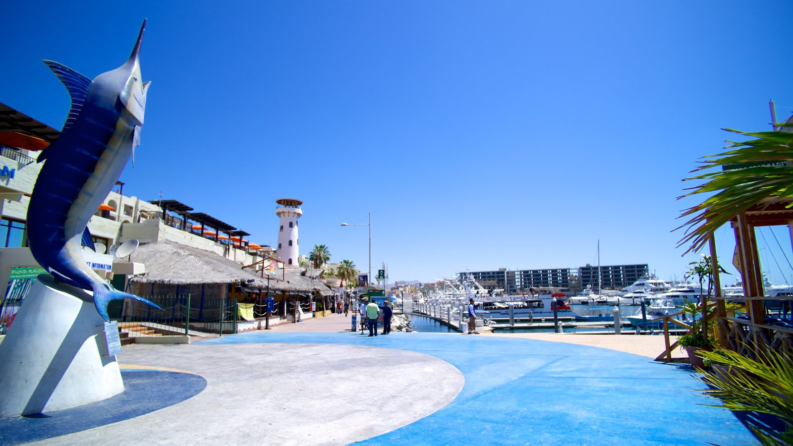 Marina Cabo San Lucas which includes outdoor art, a marina and a coastal town