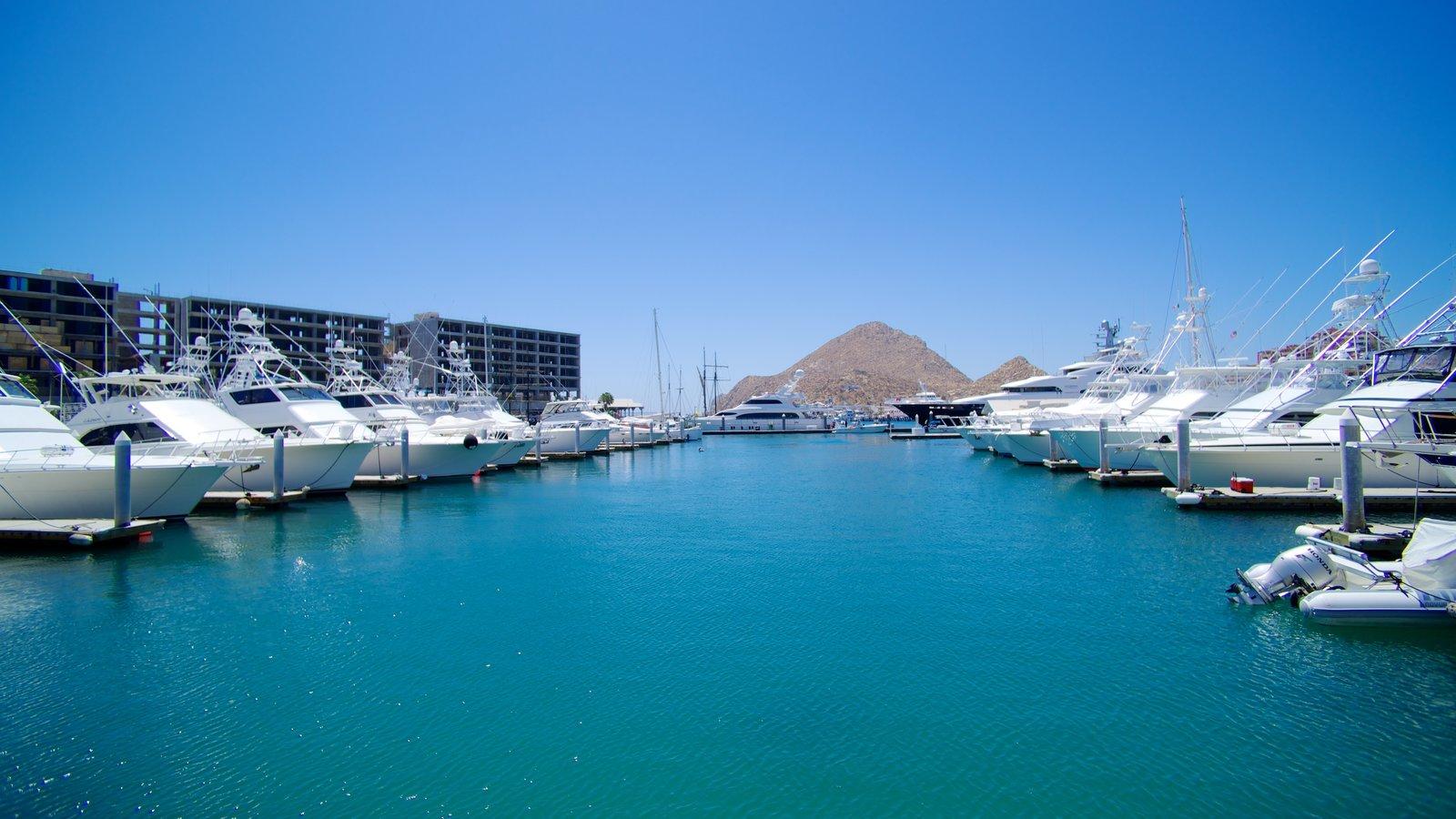 Marina Cabo San Lucas featuring a marina