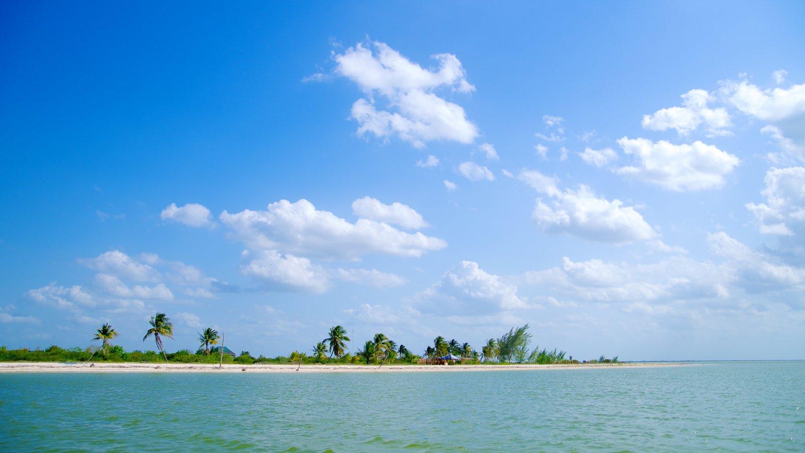 Holbox mostrando vistas de paisajes, escenas tropicales y imágenes de una isla