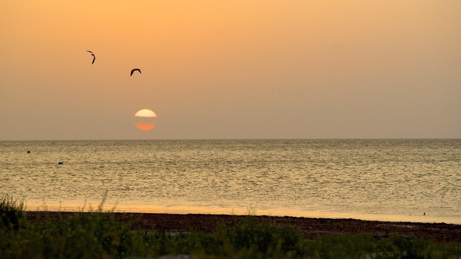 Holbox que incluye una puesta de sol, vistas generales de la costa y vistas de paisajes