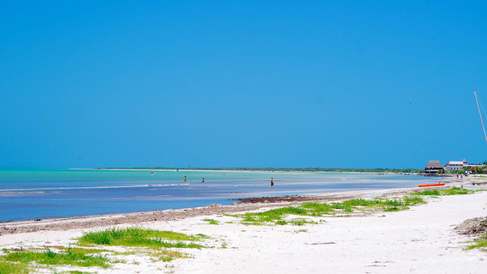 Holbox mostrando una playa de arena y vistas de paisajes