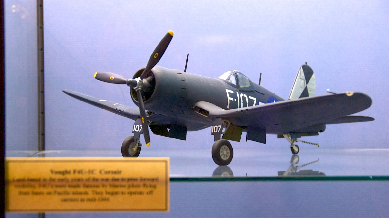 Toy and Miniature Museum which includes aircraft