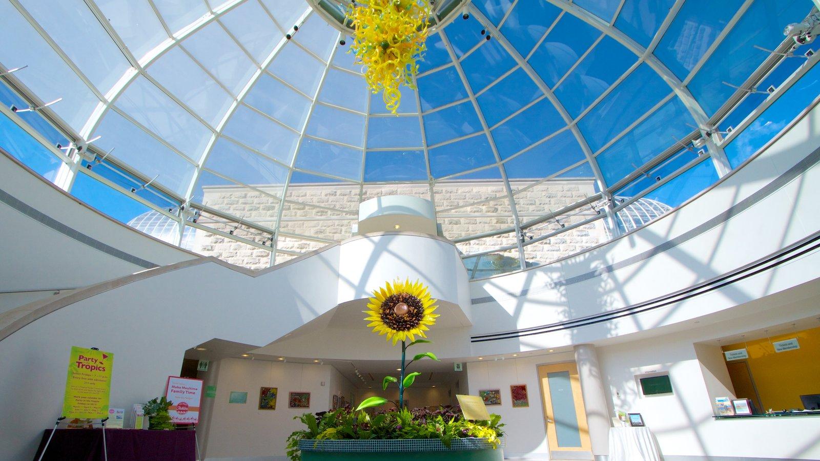 Phipps Conservatory mostrando arquitetura moderna, vistas internas e flores