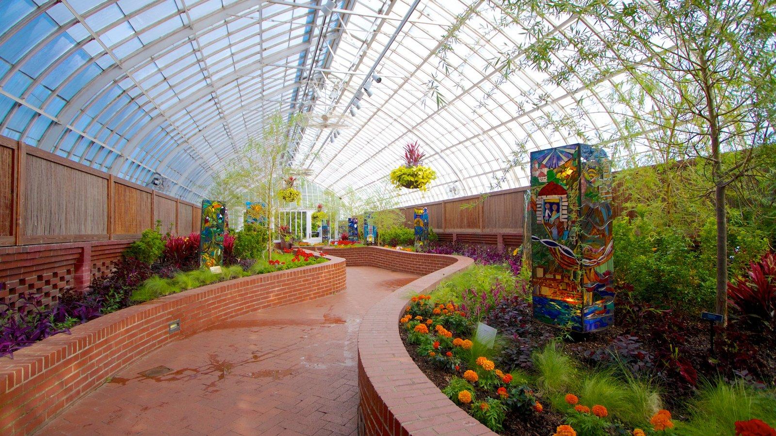 Phipps Conservatory caracterizando um jardim, vistas internas e flores
