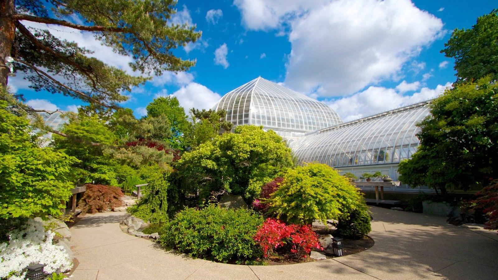 Phipps Conservatory mostrando um jardim e flores