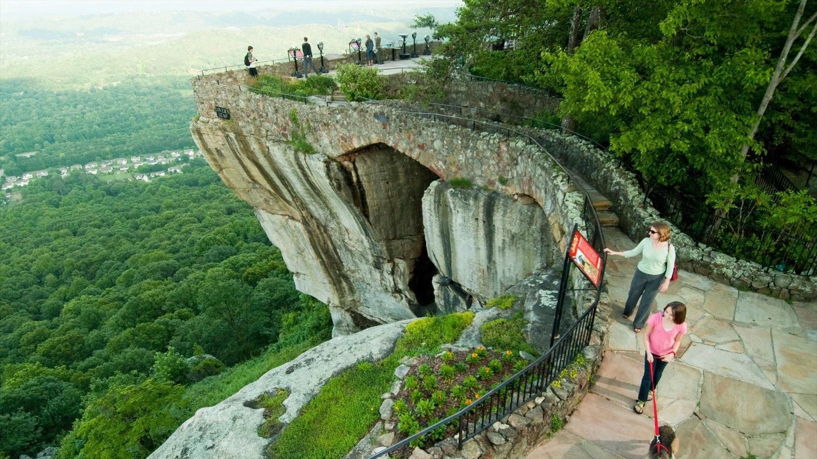 Chattanooga ofreciendo vistas y bosques y también un pequeño grupo de personas