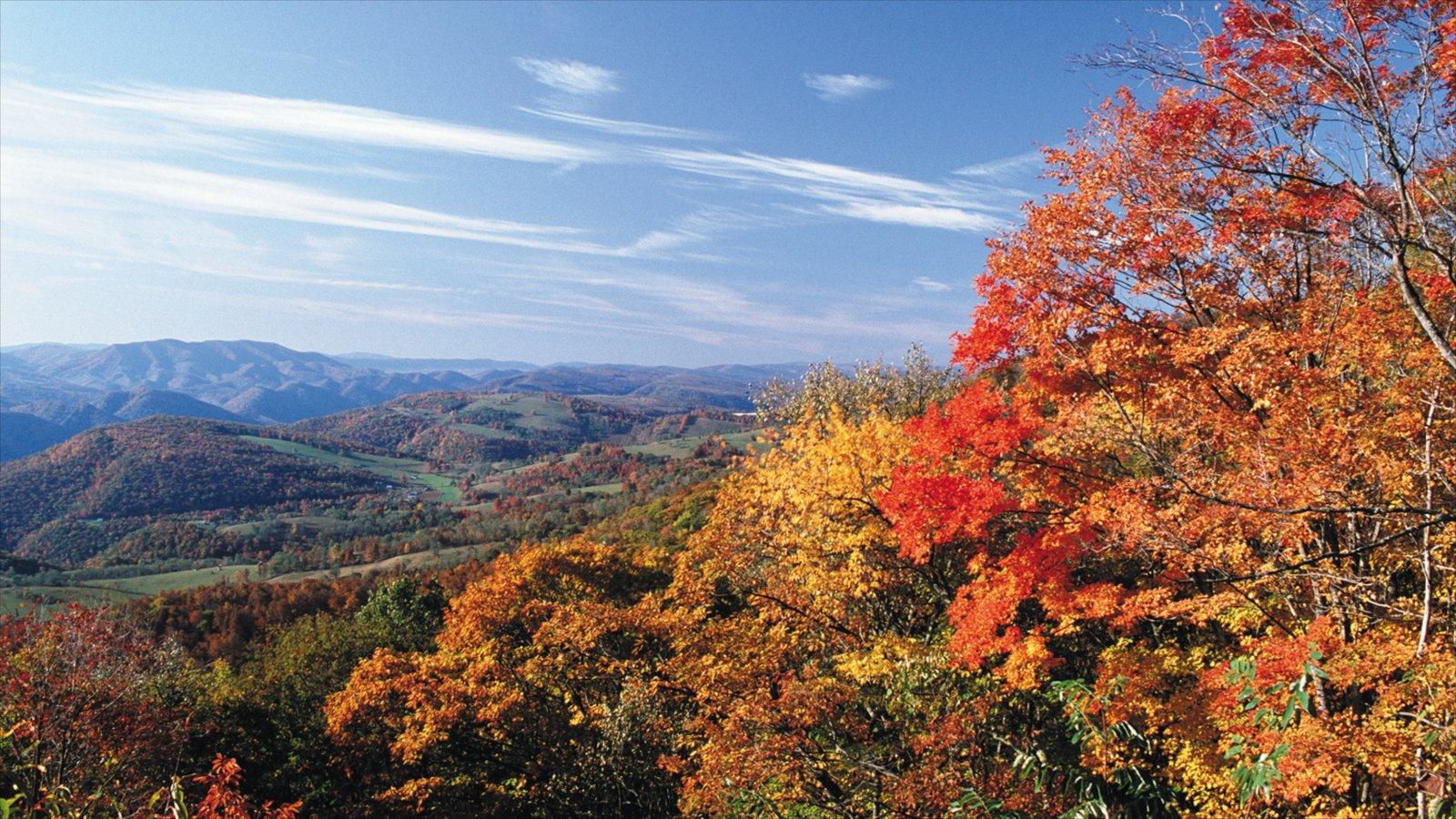 Rapid City caracterizando folhas de outono, paisagem e flores silvestres