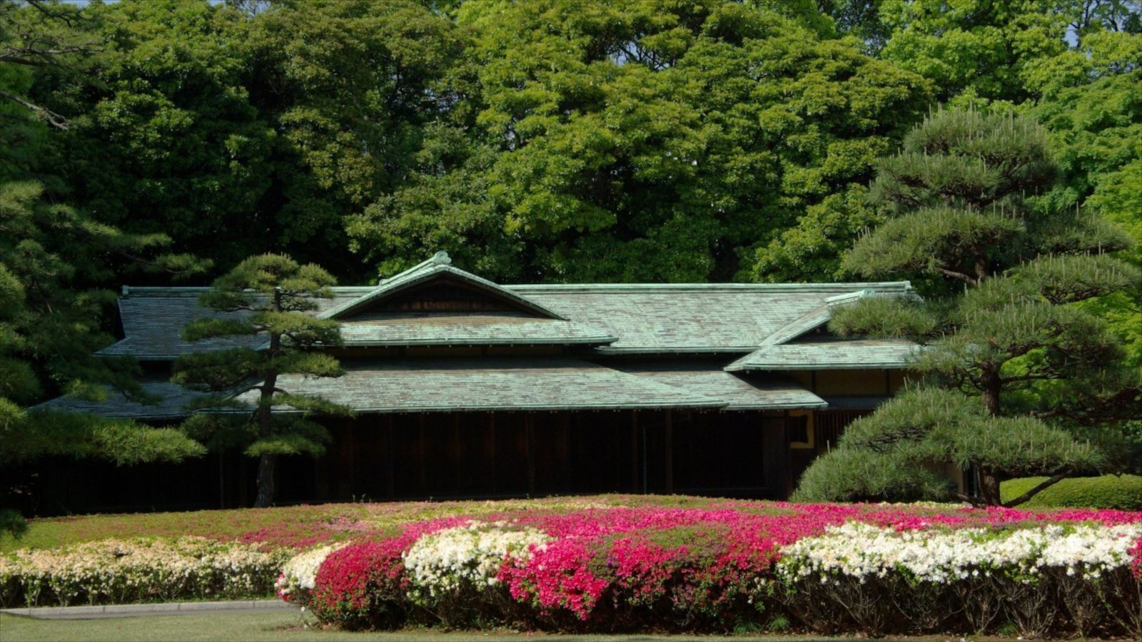 Tokyo Imperial Palace showing a castle and flowers