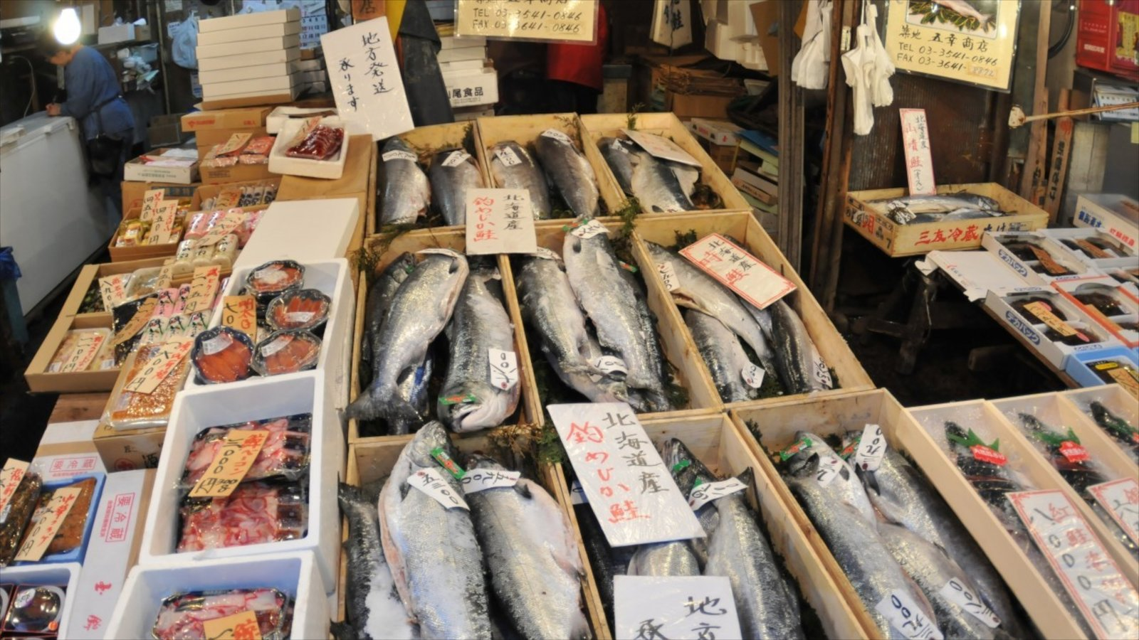 Tsukiji Fish Market which includes markets and marine life
