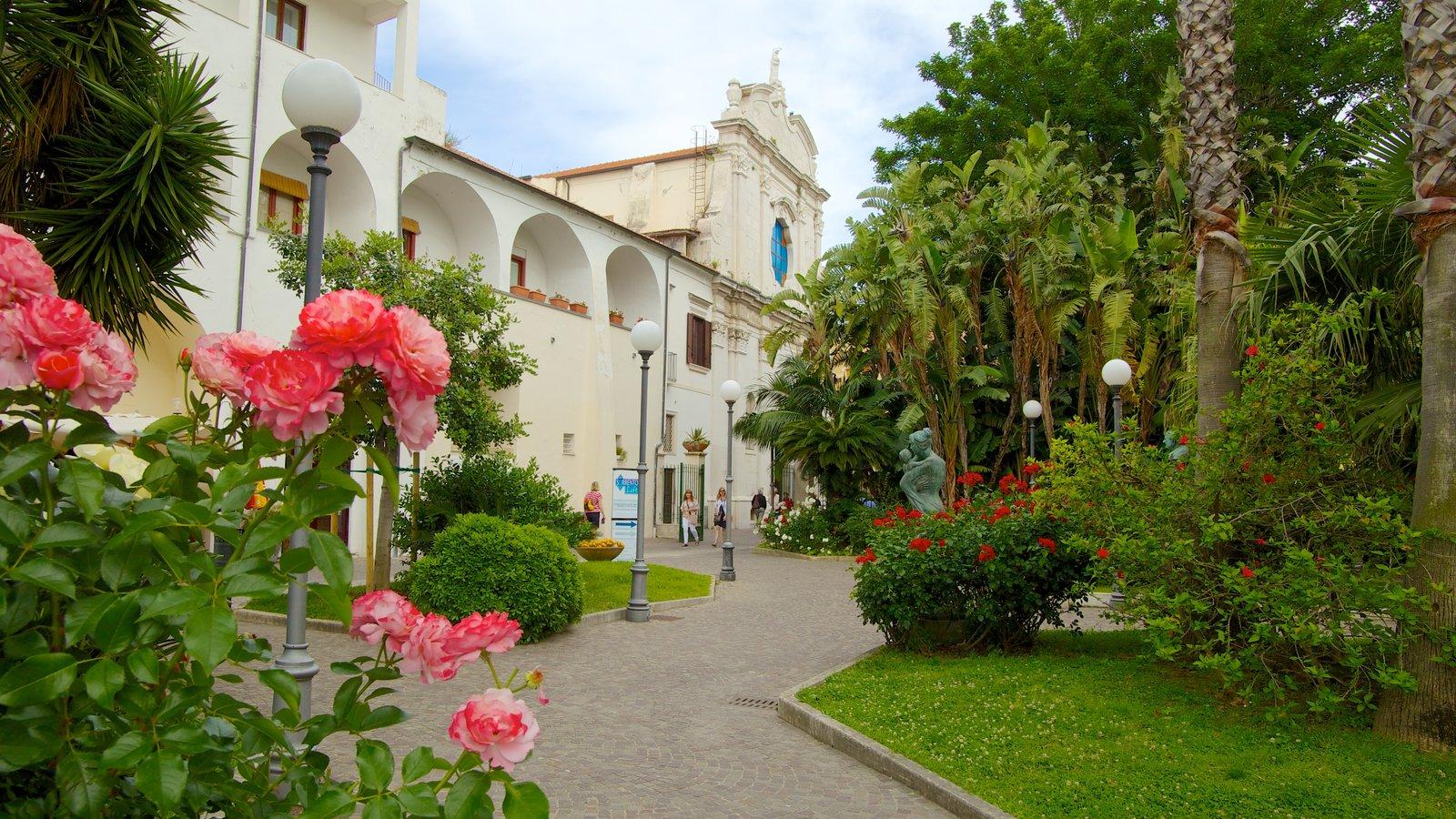 Chiesa di San Francesco que incluye un jardín, flores y escenas urbanas