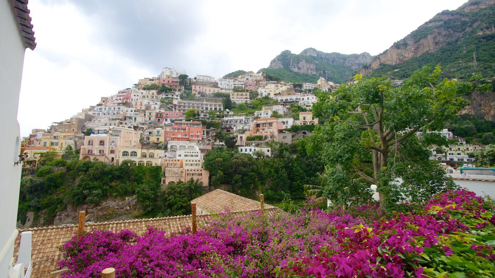 Positano showing a city and flowers