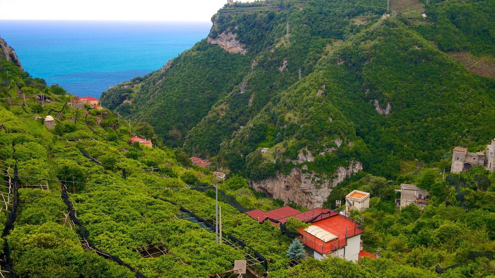 Pontone which includes general coastal views, farmland and mountains