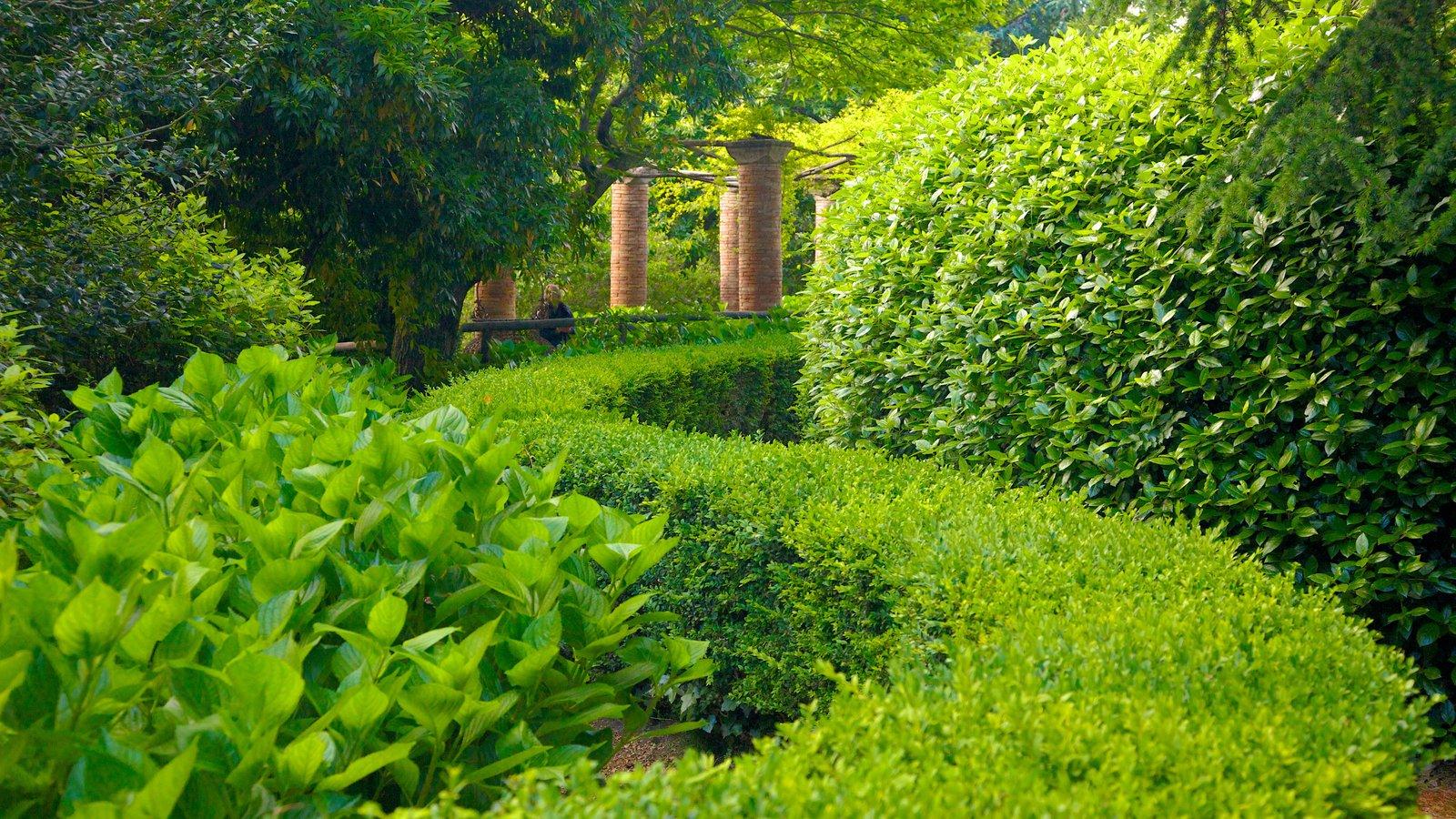 Costa de Amalfi mostrando um jardim