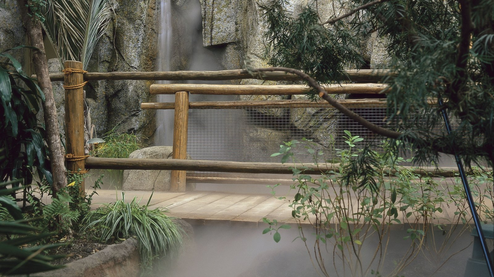 Calgary Zoo showing mist or fog and zoo animals