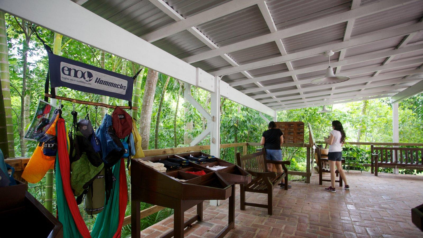 Hacienda Buena Vista showing views