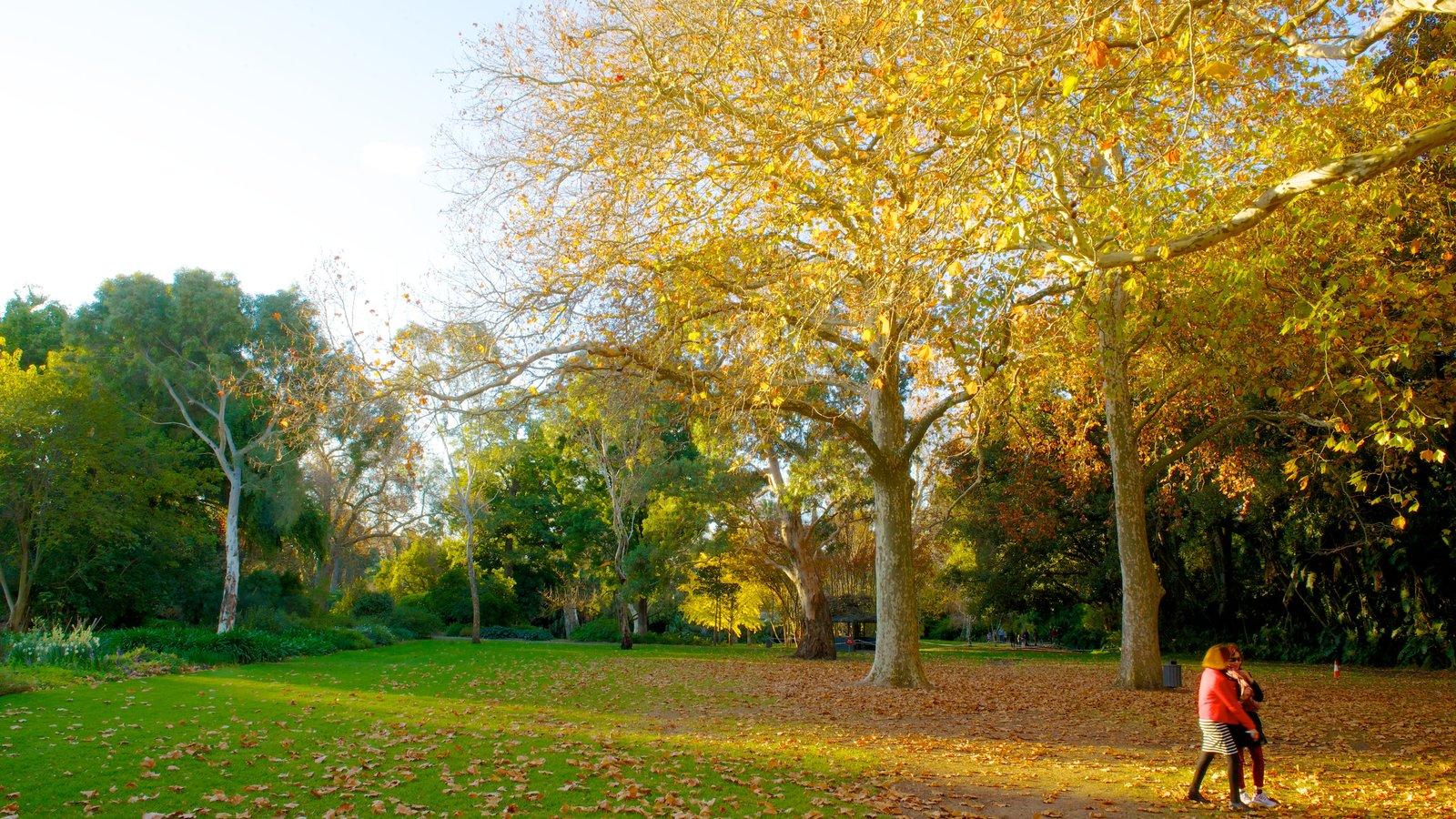 autumn pictures  view images of australia