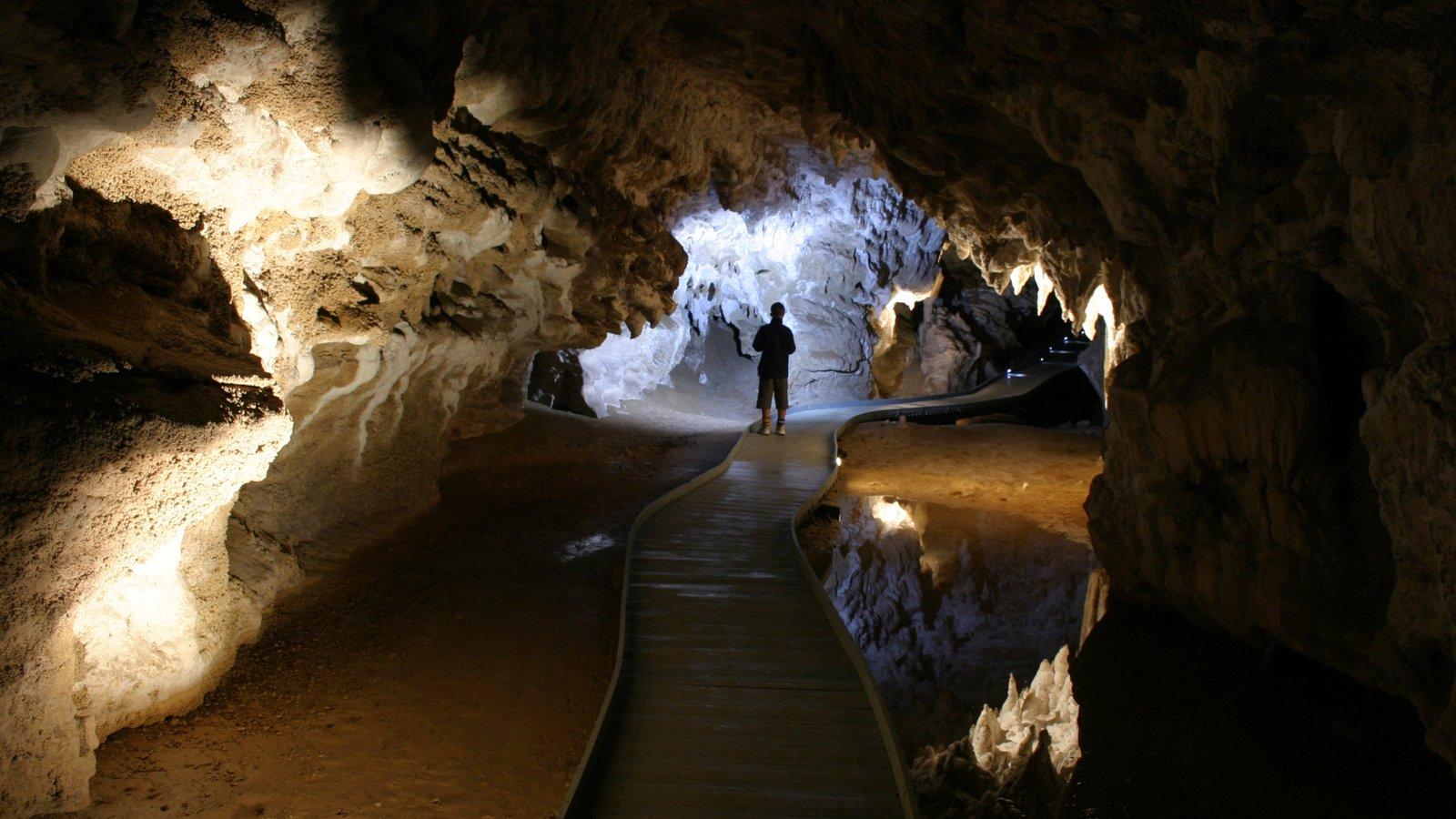 Cavernas de Waitomo caracterizando cavernas e vistas internas assim como um homem sozinho