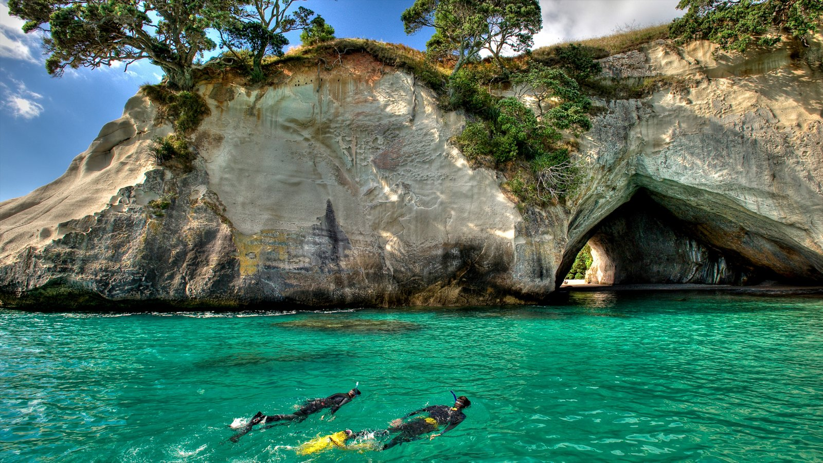 Cathedral Cove Beach showing snorkelling and rugged coastline as well as a small group of people