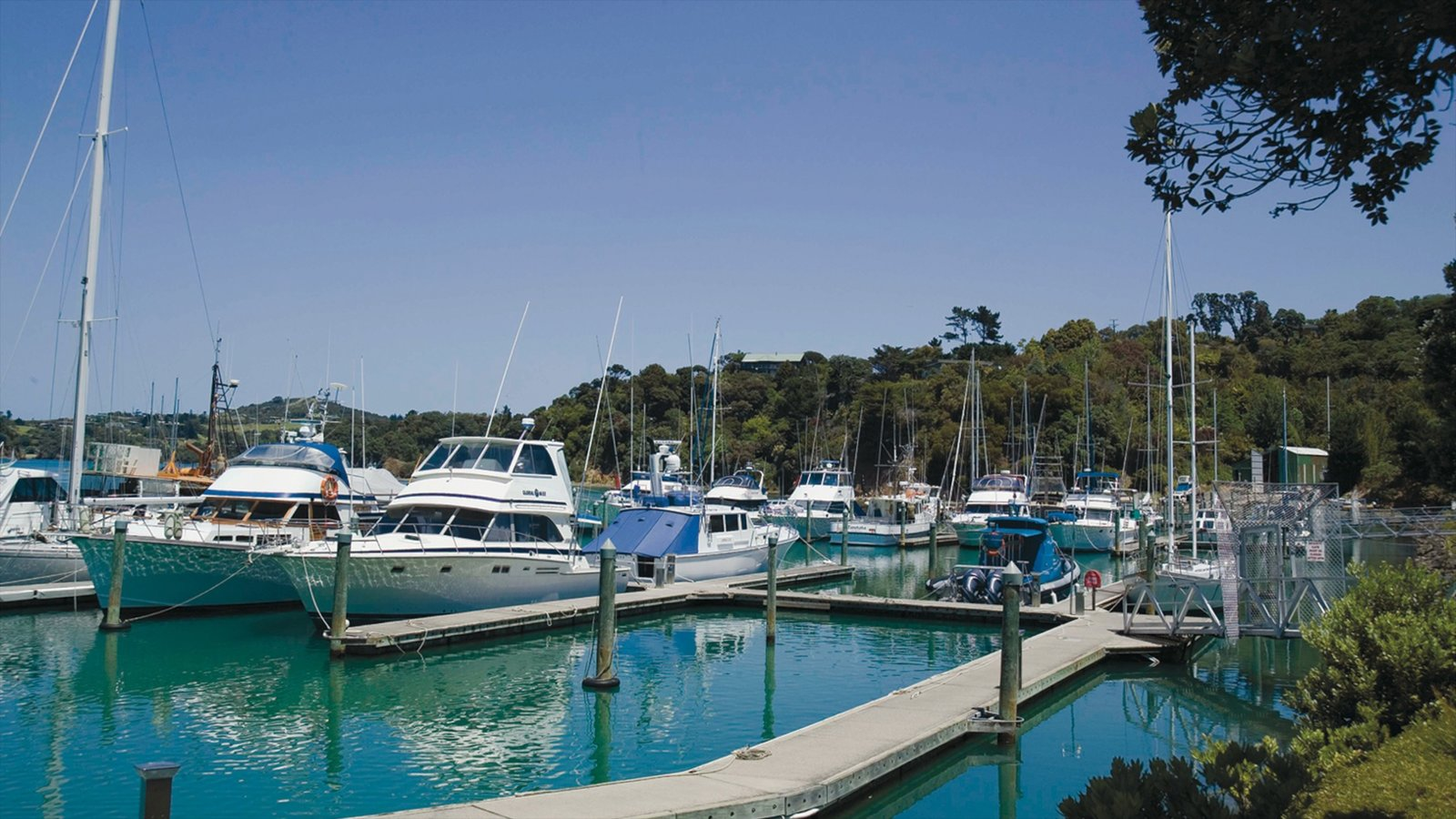 Whangarei showing boating, tropical scenes and a marina