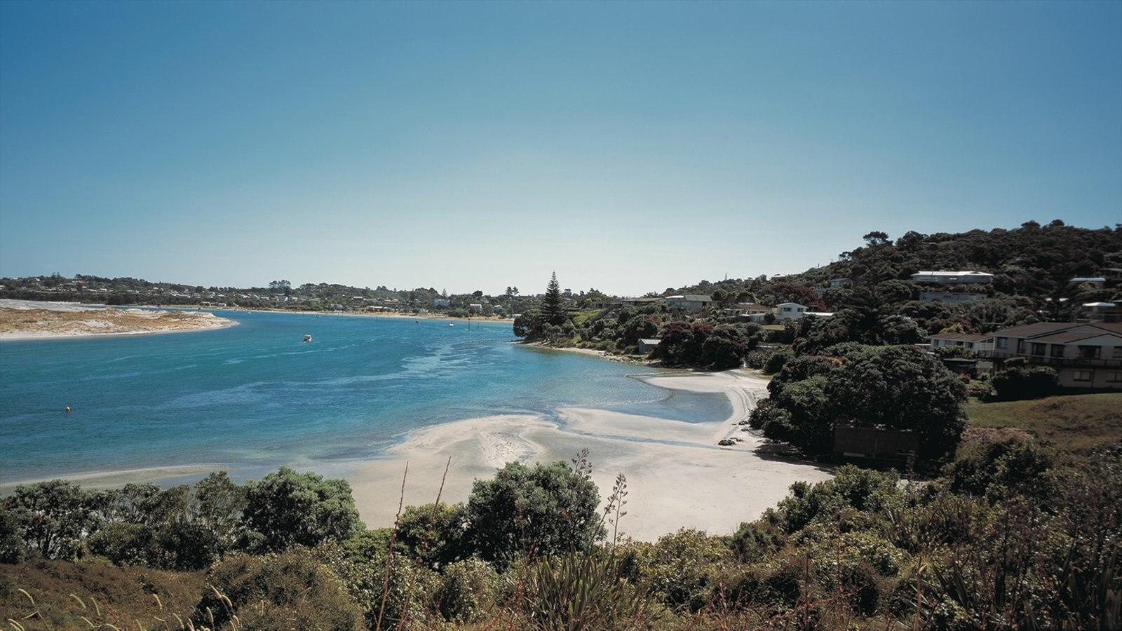Whangarei ofreciendo vistas generales de la costa, vistas de paisajes y una ciudad costera