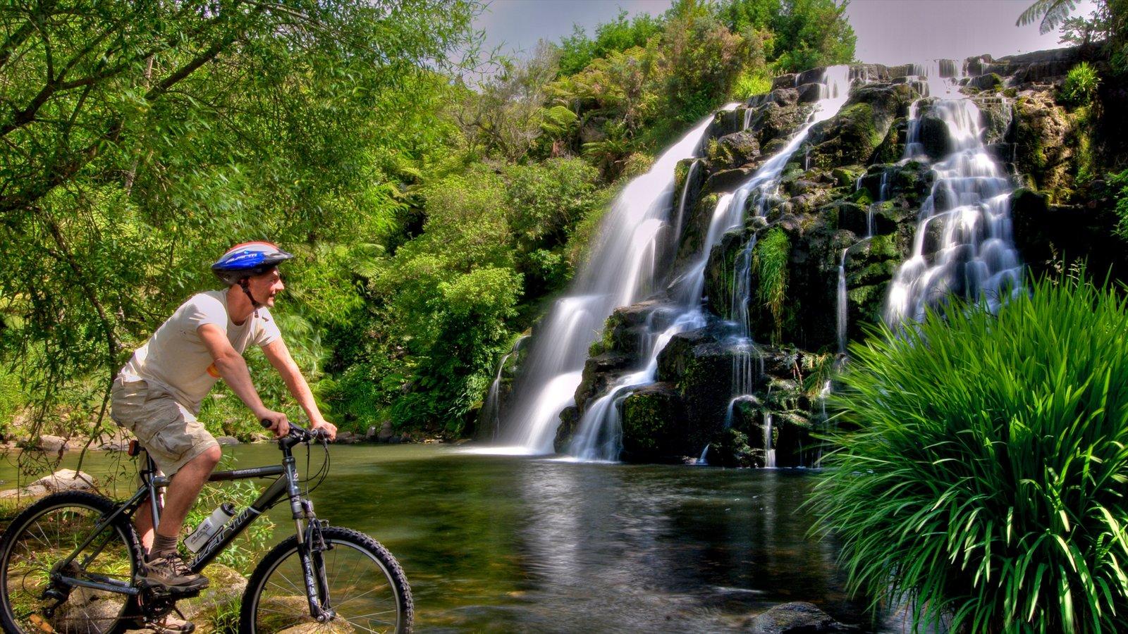 Costa de Coromandel ofreciendo bosques, un estanque y una catarata
