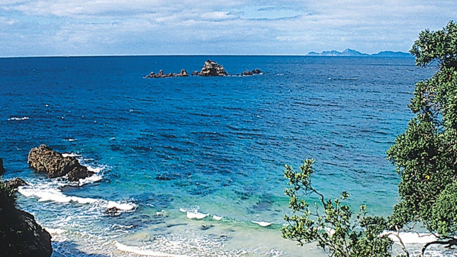 Northland que incluye vistas de paisajes, vistas generales de la costa y escenas tropicales