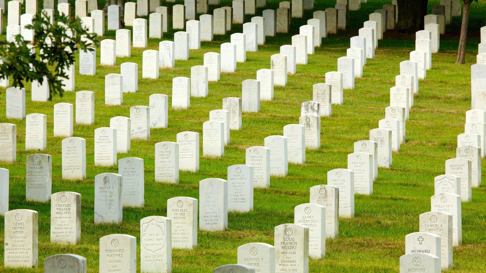 Arlington National Cemetery caracterizando um memorial e um cemitério