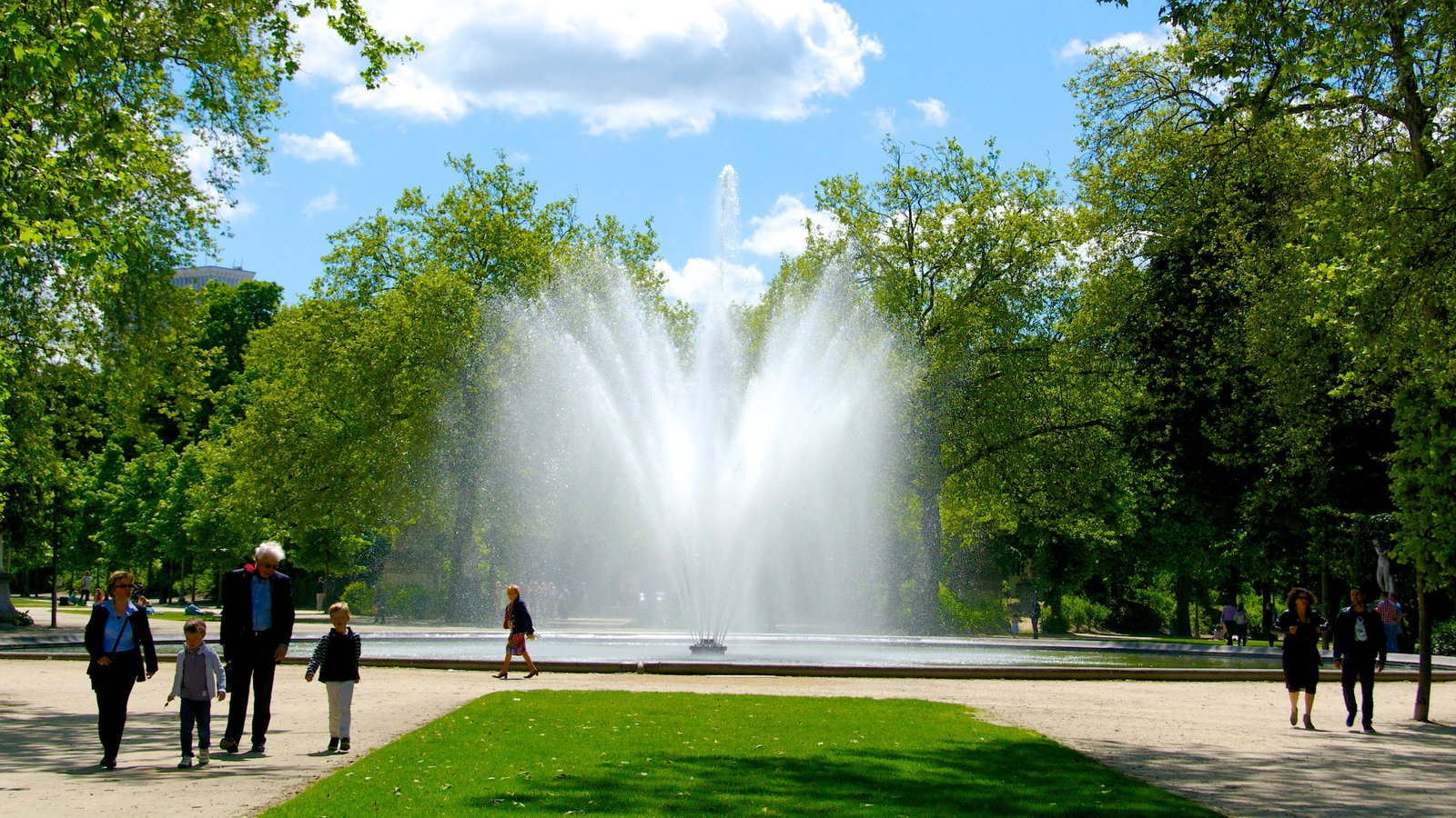 Brussels Park showing a pond, a fountain and a garden