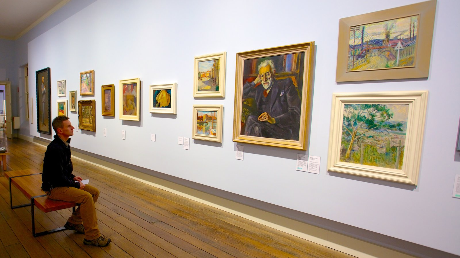 Tasmanian Museum and Art Gallery showing interior views and art as well as an individual male