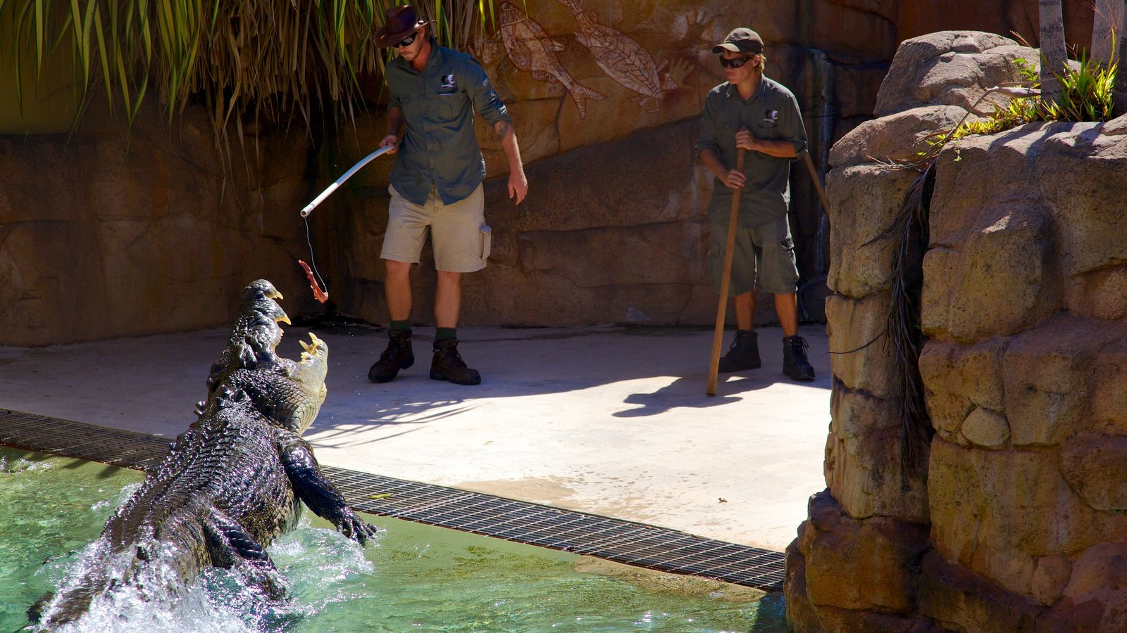 Crocosaurus Cove featuring dangerous animals and zoo animals as well as a small group of people