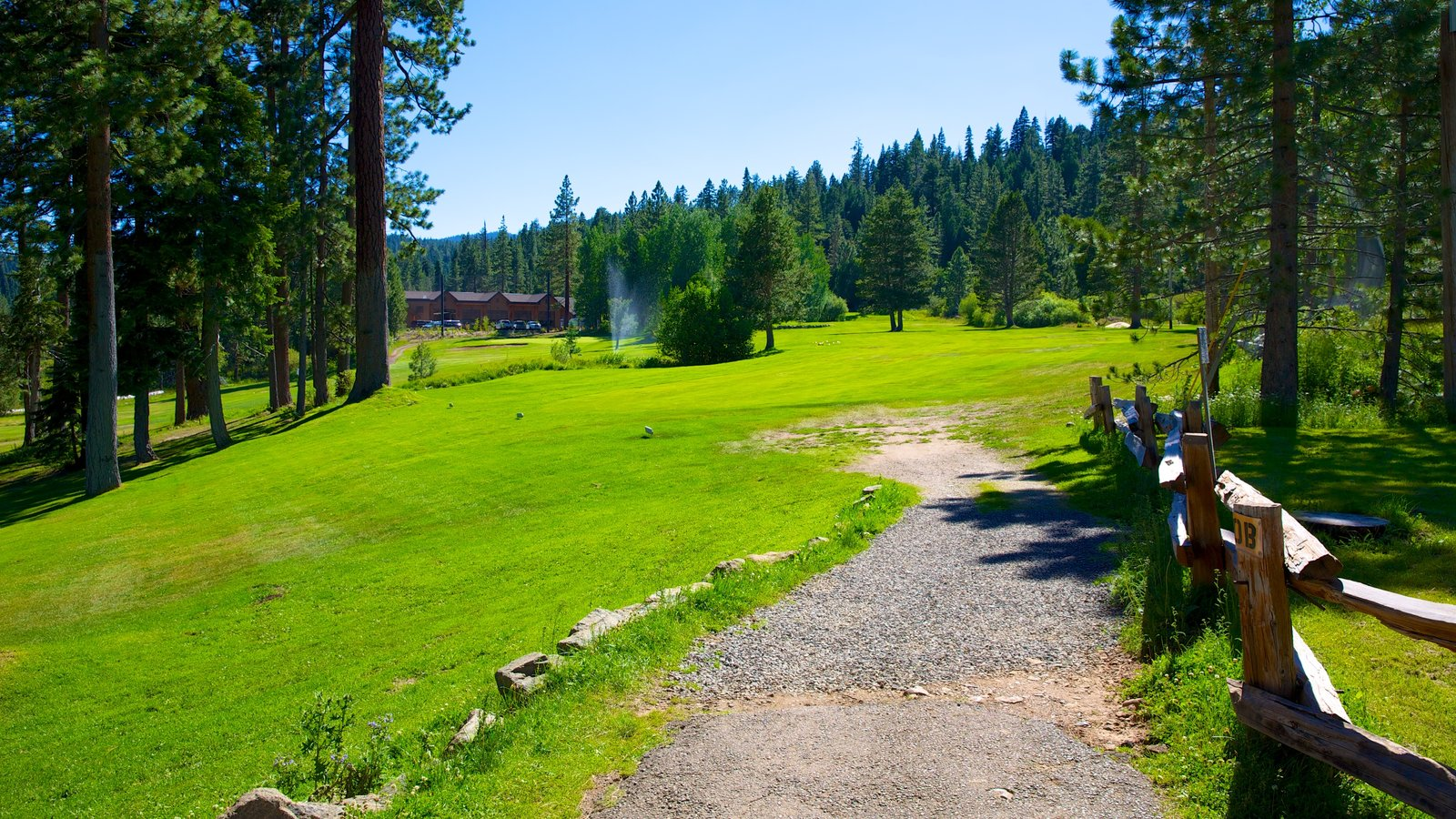 Tahoe City featuring a garden and tranquil scenes