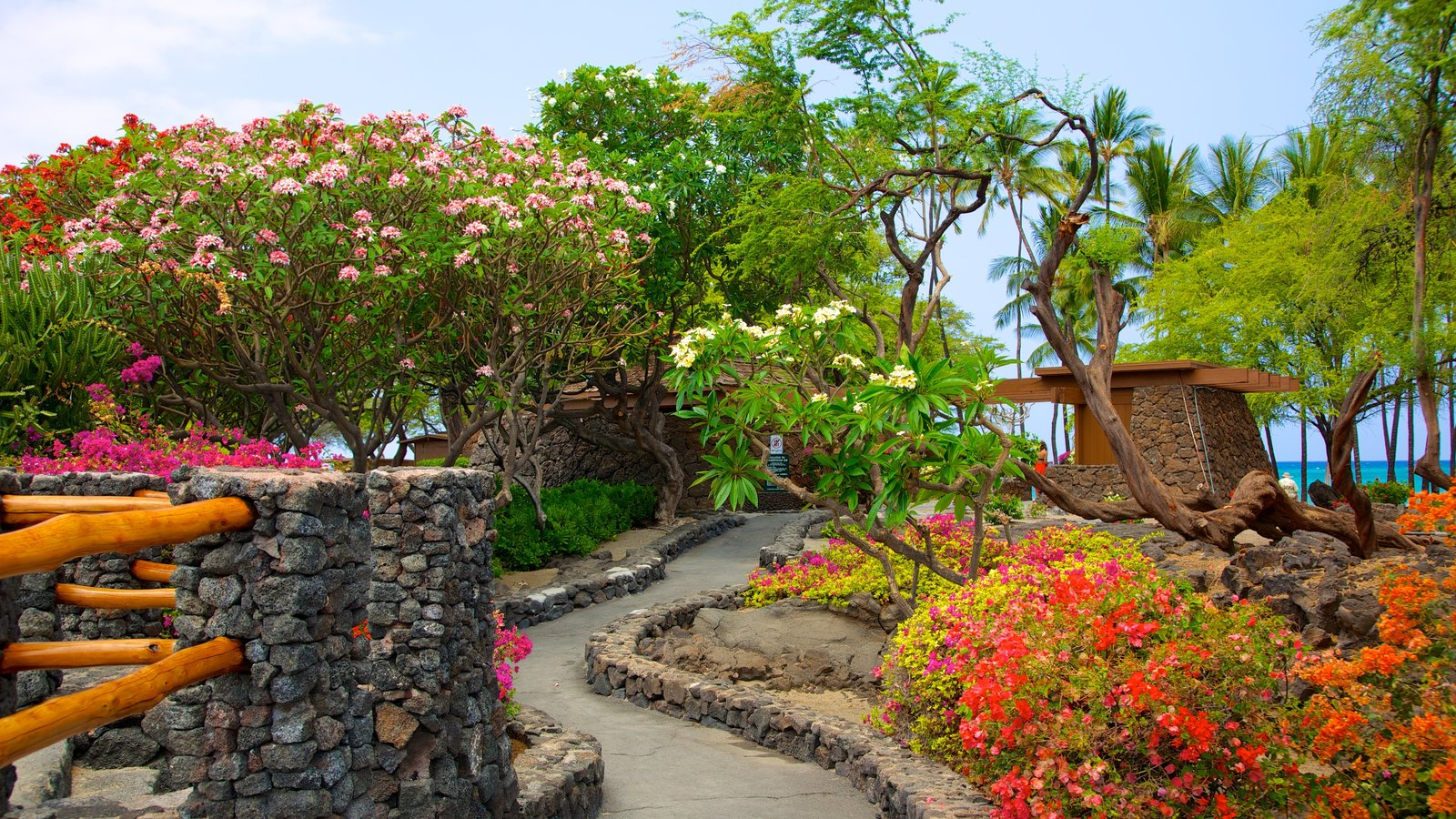 Hawai que incluye escenas tropicales, flores y un jardín
