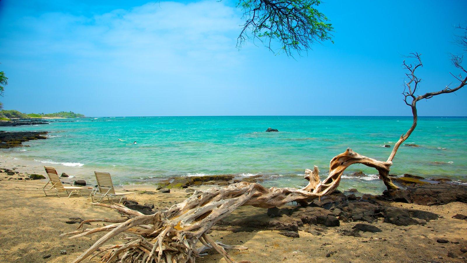 Hawai ofreciendo vistas de paisajes, escenas tropicales y una playa de arena