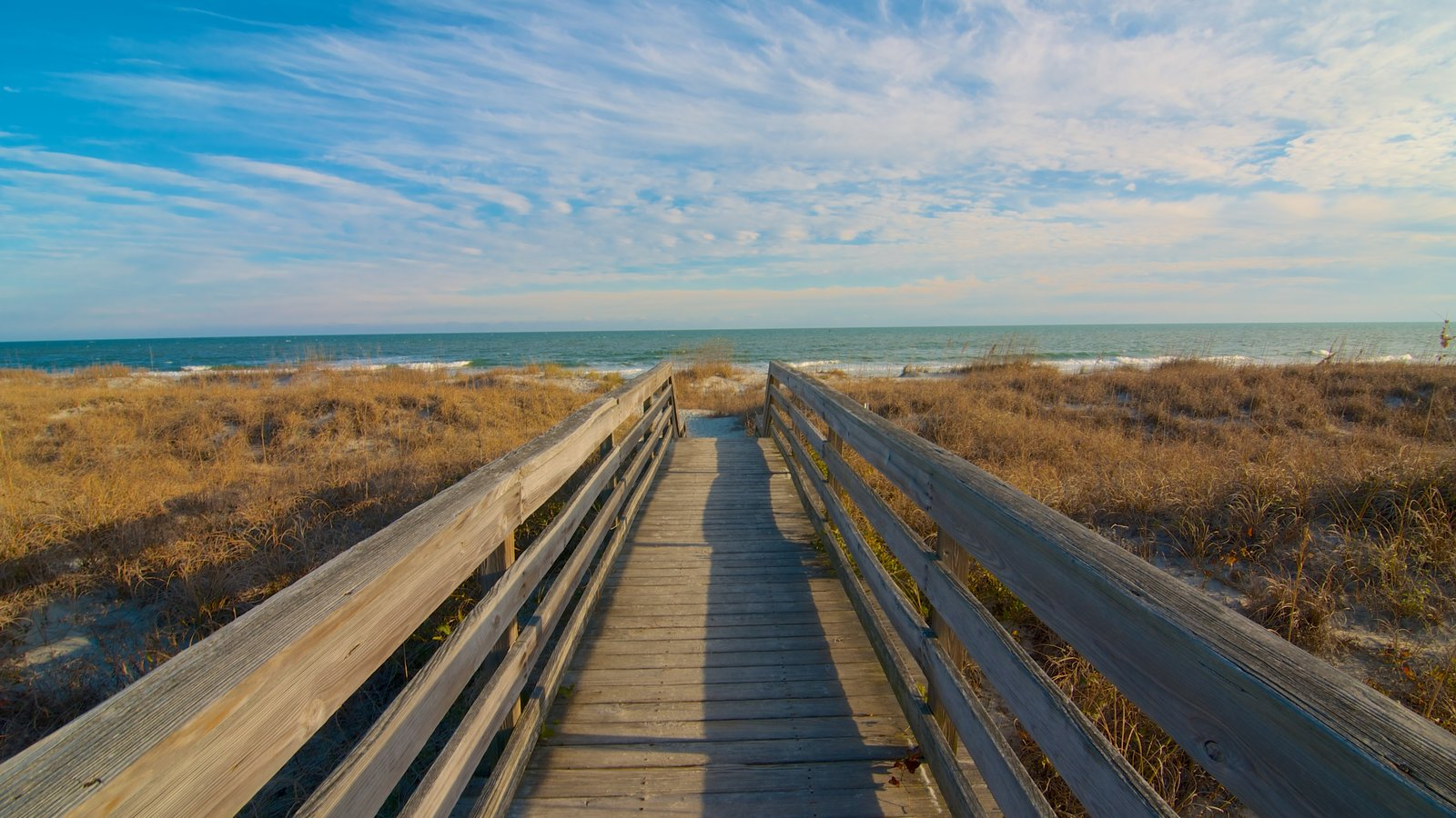 Huntington Beach State Park Featuring Landscape Views And General Coastal