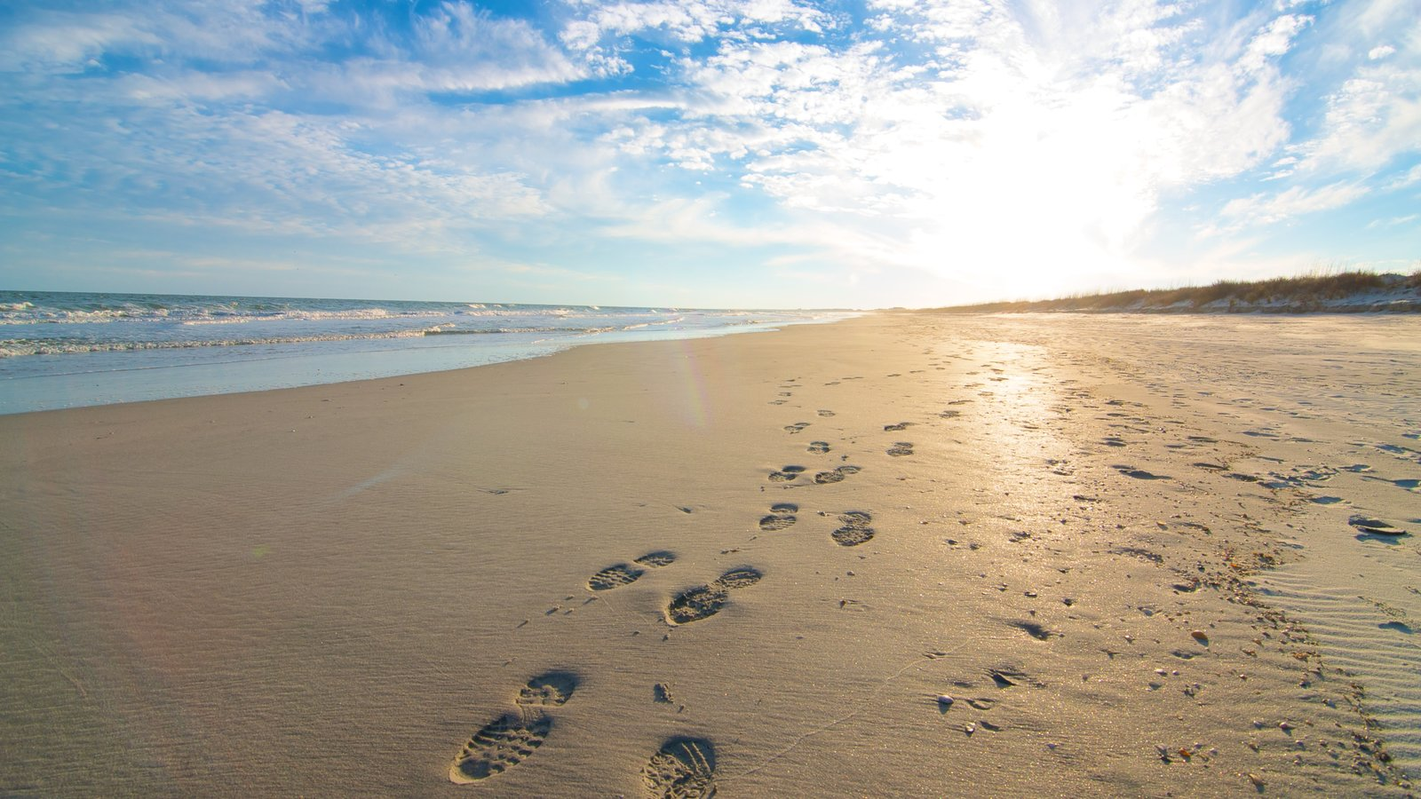 Huntington Beach State Park mostrando um pôr do sol, paisagem e uma praia