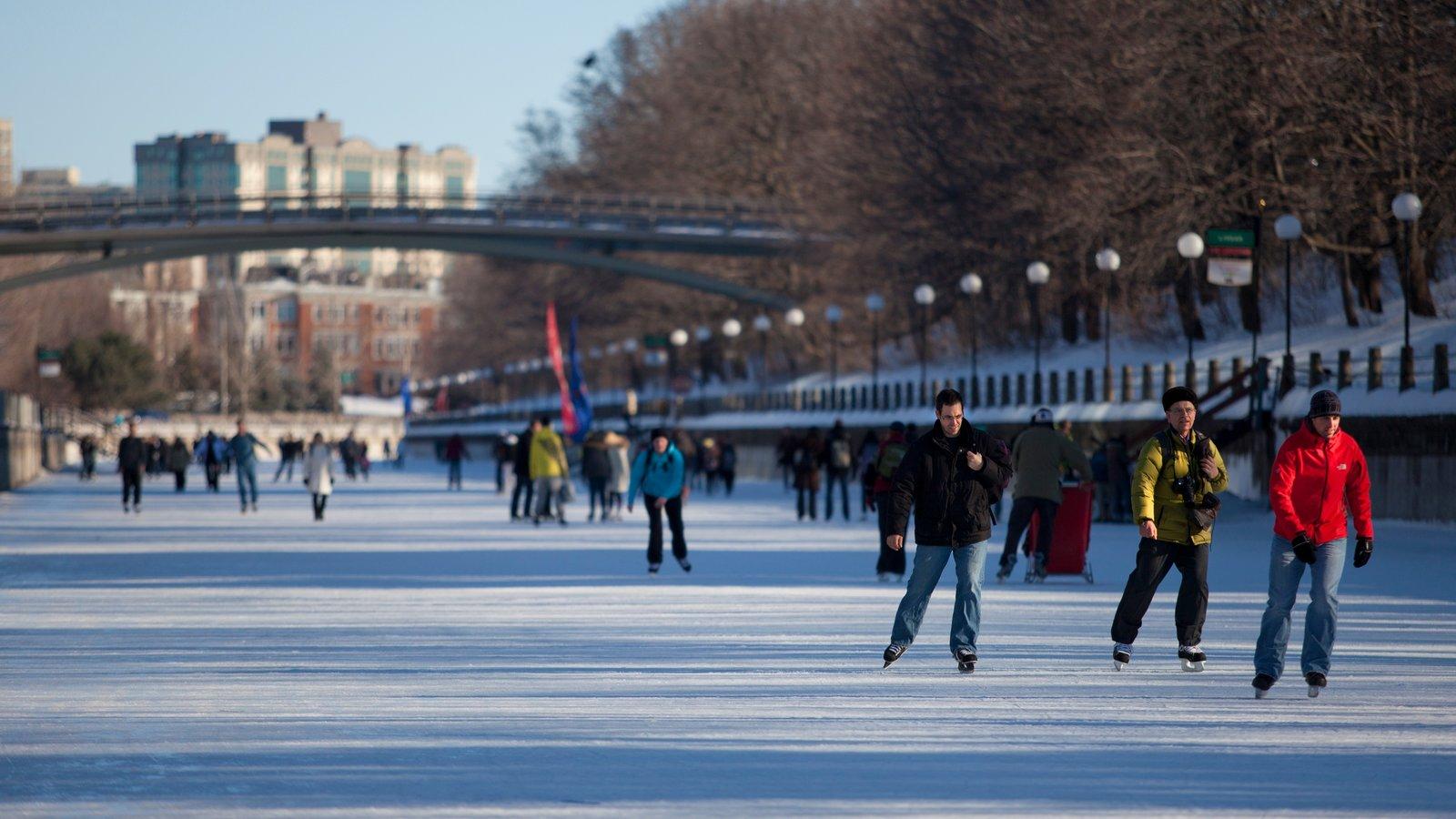 Rideau Canal que inclui patinação no gelo assim como um grande grupo de pessoas