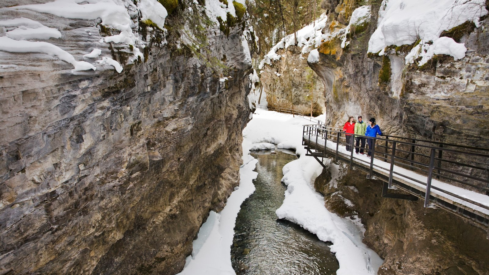 Johnston Canyon featuring a gorge or canyon, a bridge and snow