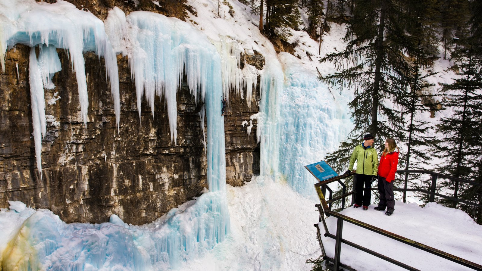 Johnston Canyon showing snow and views as well as a couple