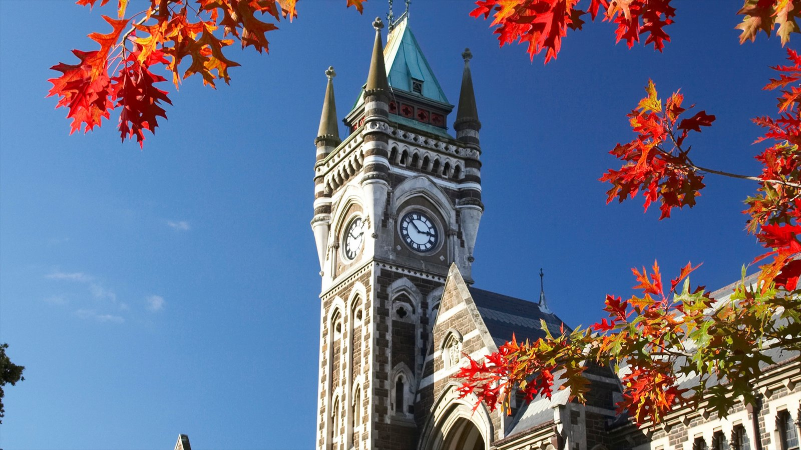 Dunedin featuring fall colors and heritage architecture