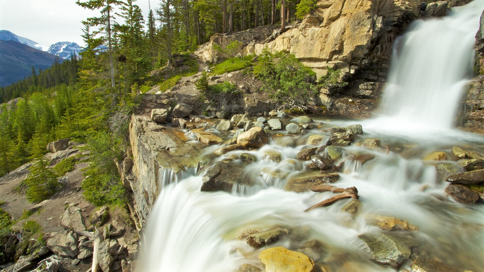 Tangle Falls which includes a waterfall and landscape views
