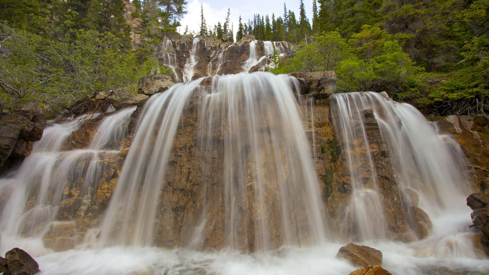 Tangle Falls which includes a cascade and forests