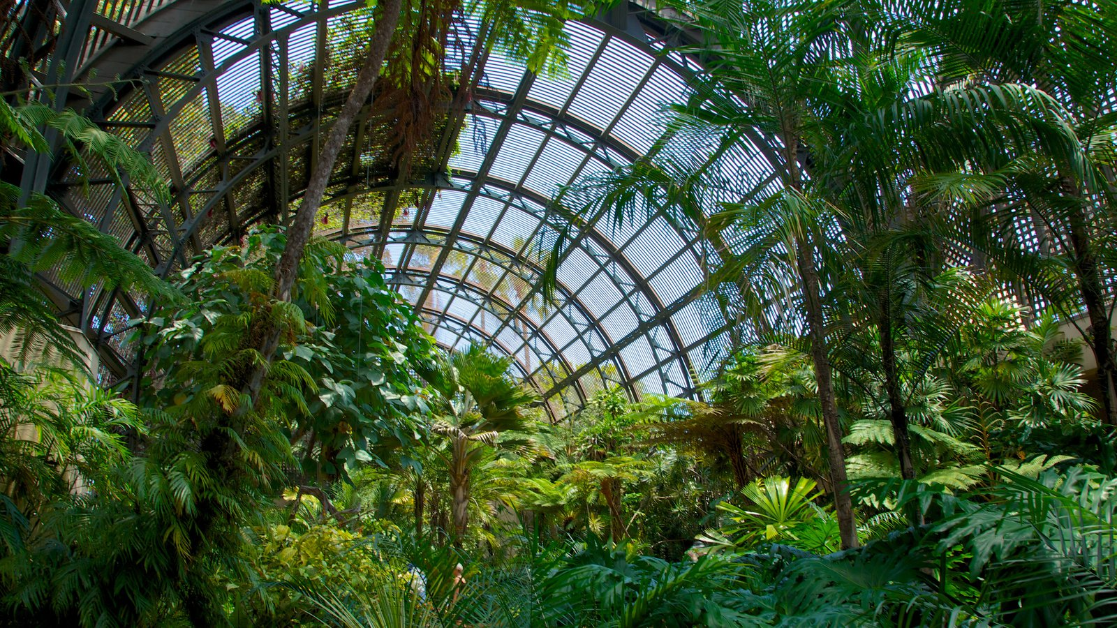 Balboa Park Featuring A Garden And Interior Views