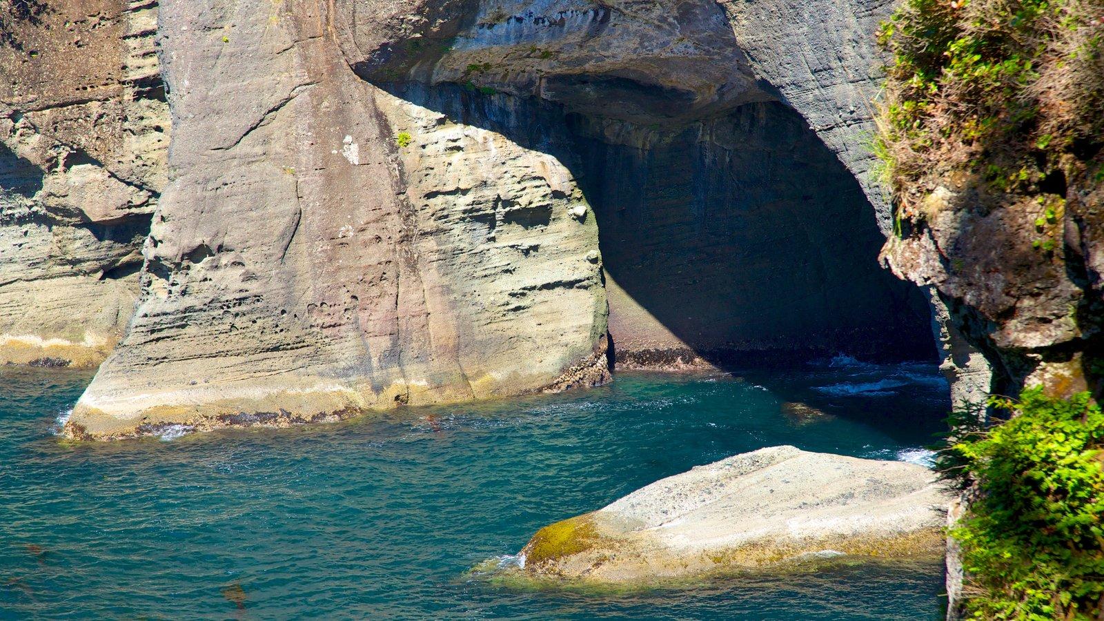 Cabo Flattery que incluye cuevas, una bahía o puerto y vistas generales de la costa